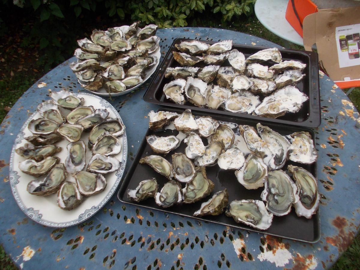 Typisch-für-die-Region-Austern.jpg