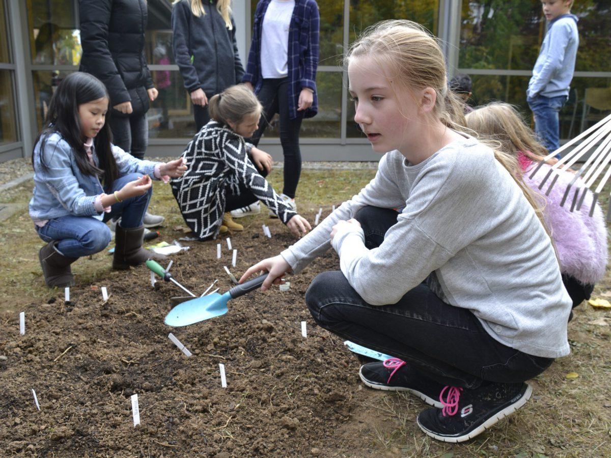 umweltschule (5)